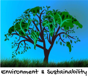 environment & sustainability policy