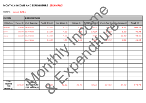 accounts-monthly-income-expenditure