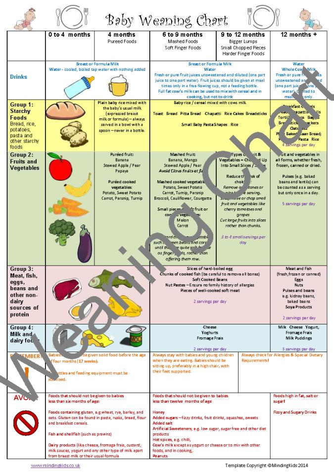 Years Baby Food Chart