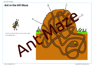 Ant in the Hill Maze