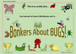 Bonkers About Bugs Certificate