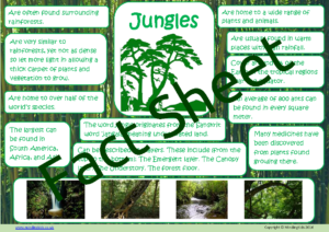 Jungle Facts