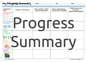 Individual Progress Summary