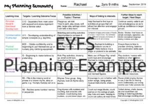 EYFS Planning Summary