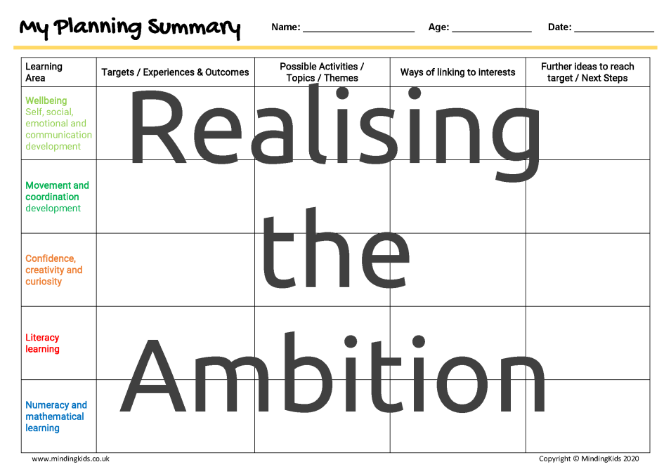 Realising the Ambition Summary